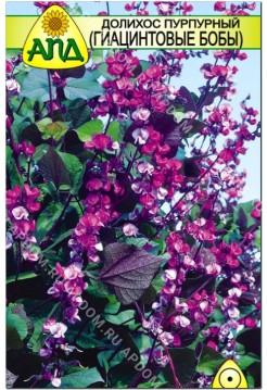 Долихос пурпурный (Гиацинтовые Бобы)